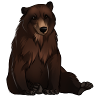 Bear (Brown)